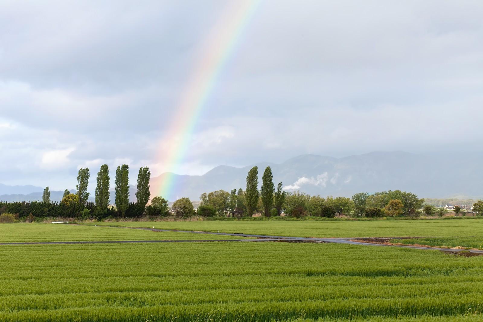 虹の7色と色が与える印象・効果