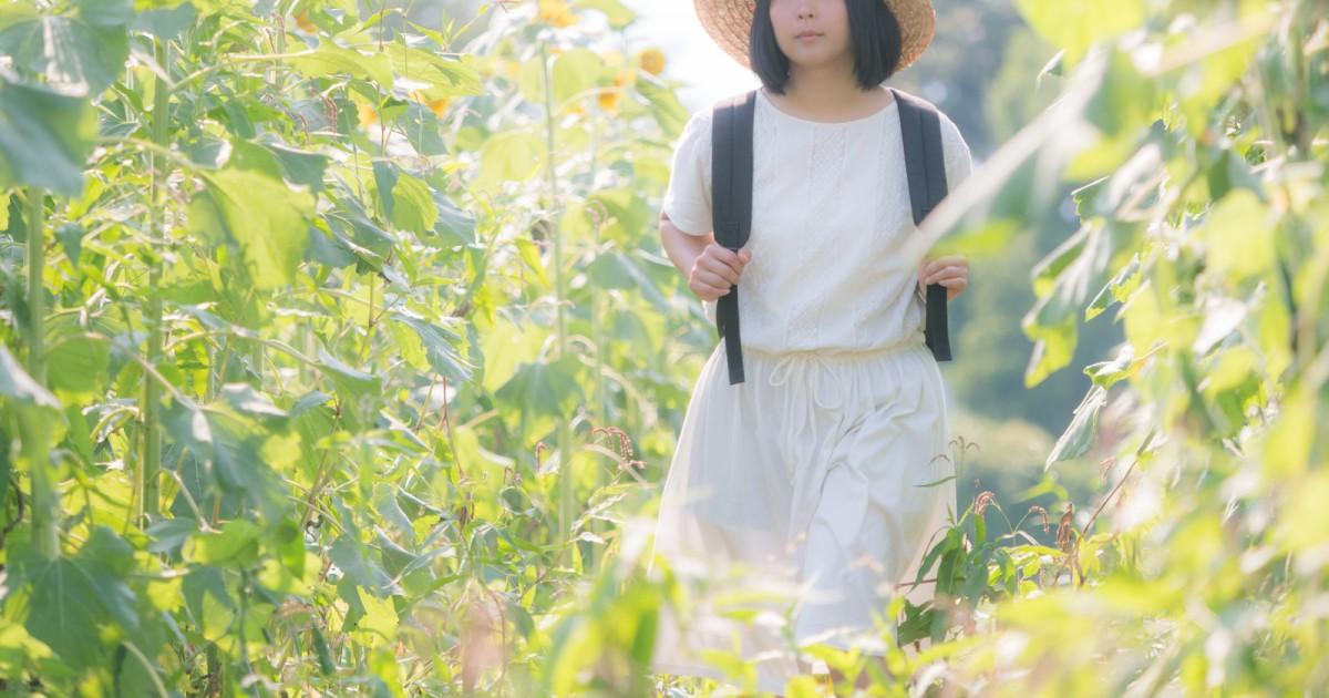 tsu_himawarinukete_tp_v